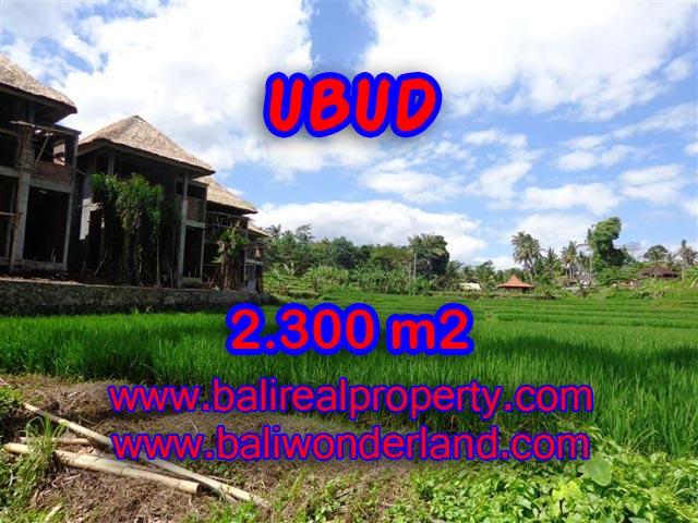 Tanah Di Ubud Dijual 2300 M2 View Sawah Dan Sungai Dekat Center