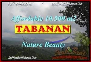TANAH MURAH di TABANAN BALI 10,500 m2 di Sukasada