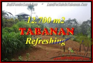 TANAH di TABANAN DIJUAL TJTB167