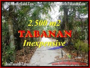 JUAL TANAH di TABANAN 25 Are View kebun