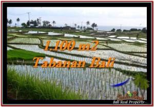 DIJUAL TANAH di TABANAN BALI TJTB248