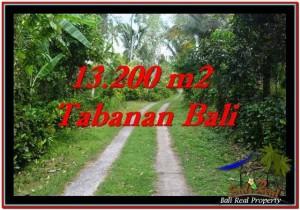 INVESTASI PROPERTI, TANAH DIJUAL MURAH di TABANAN TJTB255
