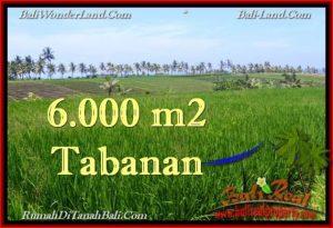 TANAH DIJUAL MURAH di TABANAN Untuk INVESTASI TJTB267