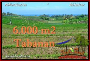 INVESTASI PROPERTY, TANAH di TABANAN BALI DIJUAL MURAH TJTB268
