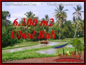 TANAH di UBUD BALI DIJUAL MURAH 6,100 m2 di Ubud Tegalalang