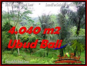TANAH MURAH JUAL di UBUD BALI 40.4 Are View Sungai dan Hutan
