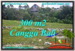 TANAH DIJUAL di CANGGU 300 m2 di Canggu Umalas
