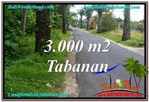 INVESTASI PROPERTI, TANAH DIJUAL MURAH di TABANAN TJTB297