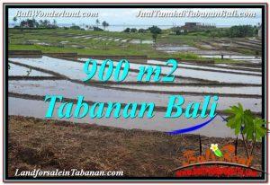 TANAH MURAH di TABANAN BALI DIJUAL Untuk INVESTASI TJTB308