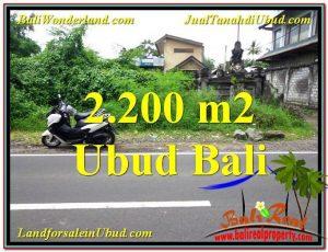TANAH di UBUD JUAL MURAH 2,200 m2 Pinggir Jalan Raya