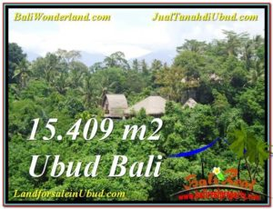 JUAL TANAH MURAH di UBUD BALI 154.9 Are View Tebing dan Sungai