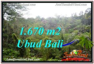 DIJUAL MURAH TANAH di UBUD BALI 16.7 Are di Ubud Payangan