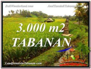 JUAL TANAH di TABANAN BALI Untuk INVESTASI TJTB328