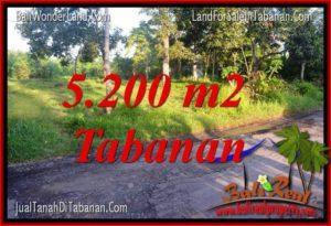 JUAL TANAH di TABANAN 5,200 m2 View Kebun dan Sungai